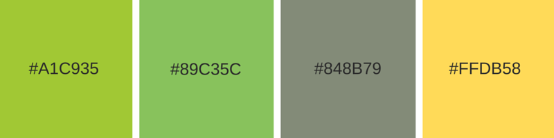 Color combinations in web design of Eastern Ranges